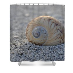 Shower Curtain featuring the photograph The Gaudy Nautica by Melanie Moraga