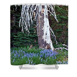 The Ghost Tree Shower Curtain