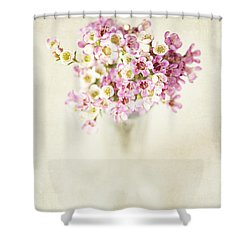 The Gift Shower Curtain by Lisa Russo