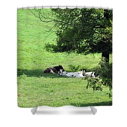 The Girls Hangout Shower Curtain by Jan Amiss Photography