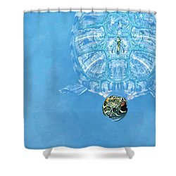 The Glass Turtle Shower Curtain