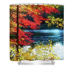 The Glory Of A New England Autumn Shower Curtain