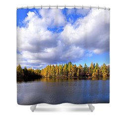 Shower Curtain featuring the photograph The Golden Forest At Woodcraft by David Patterson