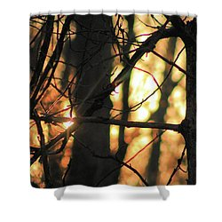 Shower Curtain featuring the photograph The Golden Hour by Bruce Patrick Smith