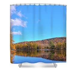 Shower Curtain featuring the photograph The Golden Tamaracks Of Woodcraft Camp by David Patterson