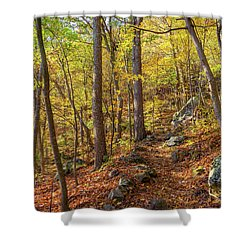 Shower Curtain featuring the photograph The Golden Trail by Lori Coleman