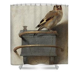 The Goldfinch, 1654  Shower Curtain by Carel Fabritius