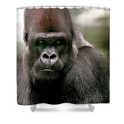 Shower Curtain featuring the photograph The Gorilla by Christine Sponchia