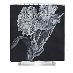 Shower Curtain featuring the painting The Gossamer Iris by Carol Wisniewski