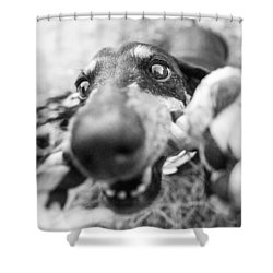 The Grab Shower Curtain