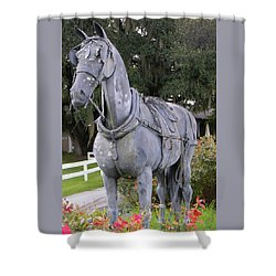 Horse At The Grand Oaks Resort Shower Curtain by Warren Thompson