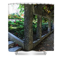 The Grape Arbor Path Shower Curtain by David Blank