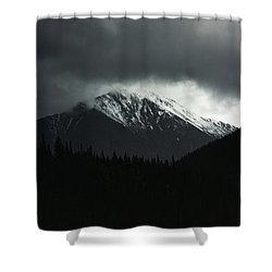 The Grays Of Grays Shower Curtain
