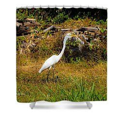 Egret Against Driftwood Shower Curtain