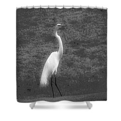 The Great Egret Shower Curtain