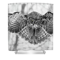 Shower Curtain featuring the photograph The Great Grey Owl In Black And White by Mircea Costina Photography