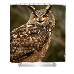 The Great Horned Owl Shower Curtain