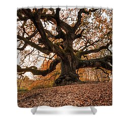 The Great Oak Shower Curtain