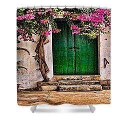 The Green Door Shower Curtain by Rod Jellison