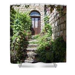 The Green Entrance Shower Curtain by Yoel Koskas