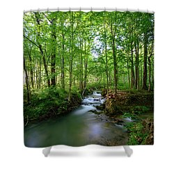 The Green Forest Shower Curtain