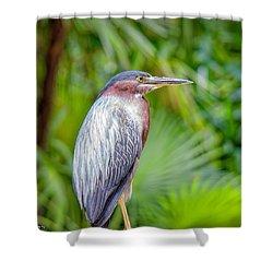 The Green Heron Shower Curtain