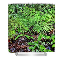 The Green Of The Forest Floor Shower Curtain