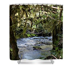 The Green Seen Shower Curtain by Marie Neder