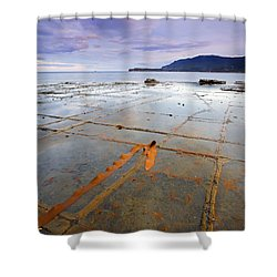 The Grid Shower Curtain by Mike  Dawson