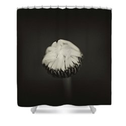 Shower Curtain featuring the photograph The Grieving Night by Shane Holsclaw