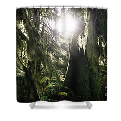 The Grove Shower Curtain