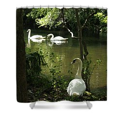 The Guard Swan Shower Curtain