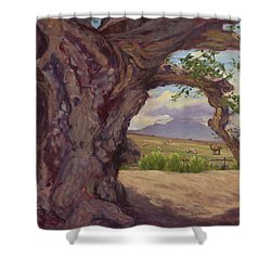 The Guardian Shower Curtain by Jane Thorpe