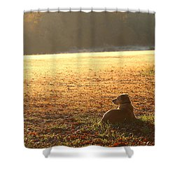The Guardian Shower Curtain by Sheila Brown