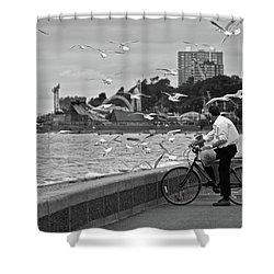 The Gull Man Shower Curtain