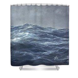 The Gull's Way Shower Curtain by Richard Willis
