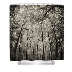 The Hands Of Nature Shower Curtain