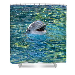 The Happy Dolphin Shower Curtain