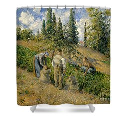 The Harvest, Pontoise, 1881  Shower Curtain