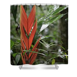 The Heart Of The Amazon Shower Curtain