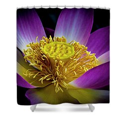 The Heart Of The Lily Shower Curtain