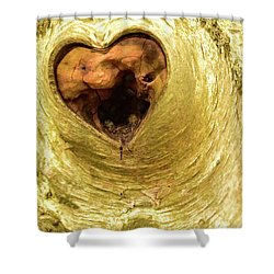 The Heart Of The Tree Shower Curtain