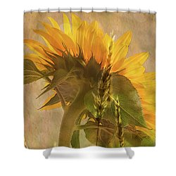 The Heat Of Summer Shower Curtain