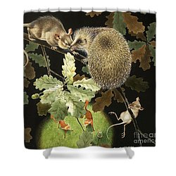 The Hedgehog Shower Curtain
