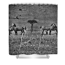 Shower Curtain featuring the photograph The Herd by Karen Lewis