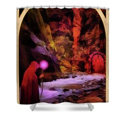 The Hermit Shower Curtain by John Edwards