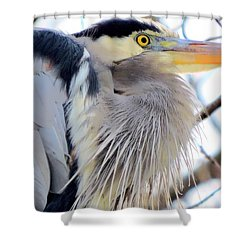 The Heron In Winter  Shower Curtain