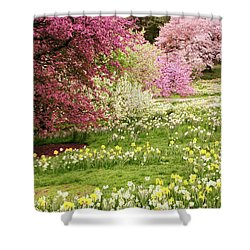 Shower Curtain featuring the photograph The Hills Are Alive by Jessica Jenney