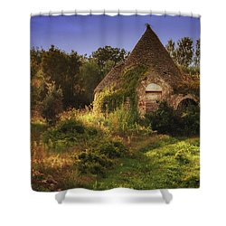 The Hobbit House Shower Curtain