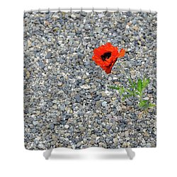 The Hopeful Poppy Shower Curtain
